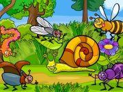 เกมส์จับผิดภาพแมลง